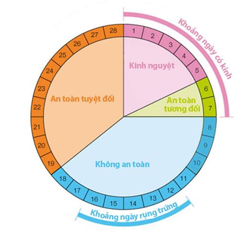 Cách tính vòng kinh để thụ thai như thế nào?