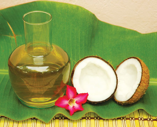 Chữa trị bệnh trĩ bằng dầu dừa